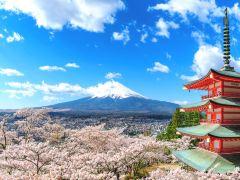 拥抱富士山,东京深度6日游