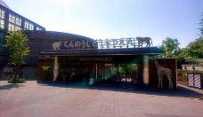 天王寺动物园-大阪-M31****5916