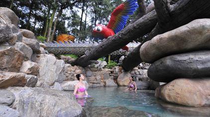 金方森林温泉 (4)