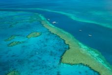 大堡礁-大堡礁-doris圈圈