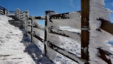 轿子雪山 (9)