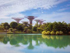 新加坡深度亲子探索6日游