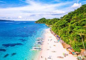 Aquatic Adventures: A Submarine Safari in the Philippines