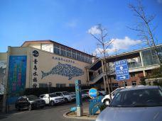 淡水生物馆-青岛-雨停晴空