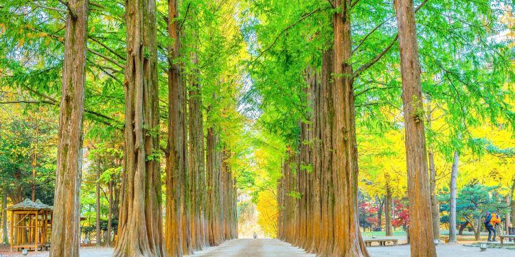 春川市图片