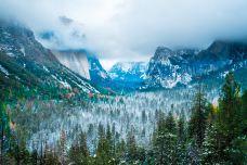优胜美地国家公园-优胜美地国家公园及周边地区-尊敬的会员