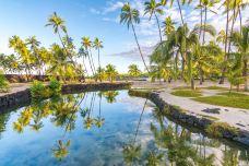 夏威夷-尊敬的会员