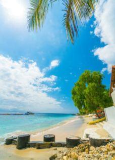 巴厘岛-在路上的Jorick
