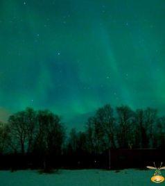 萨米游记图文-为什么说要去瑞典过冬?