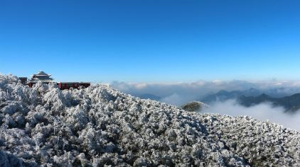 莽山国家森林公园 (15)