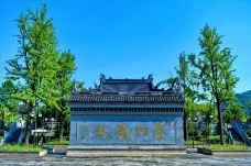 东山景区-上虞区-300****731