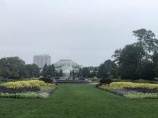 林肯公园动物园-芝加哥-66****077