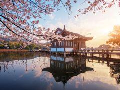 春日下江南,杭州精华3日游