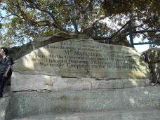 麦考利夫人座椅-悉尼-M34****0734