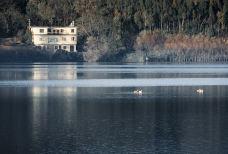 念湖-会泽-顺时针1986