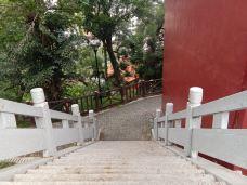 观山寺群 -高州-康娜酱香饼