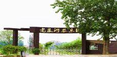 老泉河生态农庄-阜阳-AIian