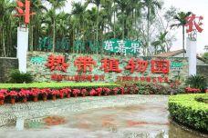 海南农垦万嘉果·热带经济植物观光示范园-定安-一个大橙子