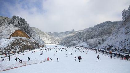 大明山高山滑雪134461 (19)