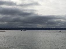 罗托鲁瓦湖-罗托鲁瓦-GOODTIME2016