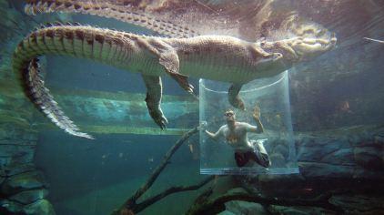 可可洛思鳄鱼湾主题公园3