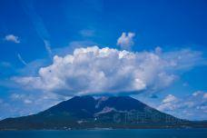 樱岛-鹿儿岛-是条胳膊
