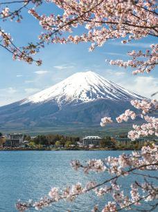 富士山-富士山-C-image2018