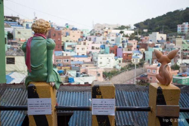 【甘川洞文化村】甘川洞文化村一日遊:交通、景點、美食大公開