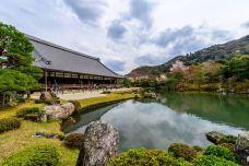 天龙寺-京都-M30****2697
