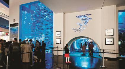 迪拜水族馆 (3)