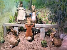 彼得兔世界-湖区-黑色柳丁9988