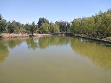 伊宁城市海景公园-伊宁市-M25****6068