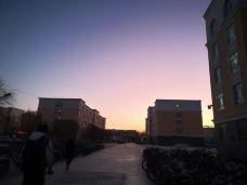 塔里木大学-阿拉尔-奥尔斯克鳌拜