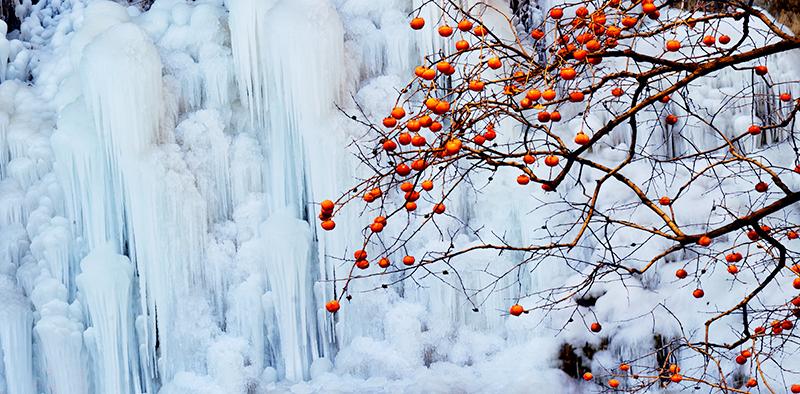 河北平山沕沕水生態風景區一日遊(賞冰瀑、觀冰燈)