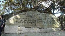 麦考利夫人座椅-悉尼-M34****4580