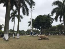 石炮台公园-汕头-118****782