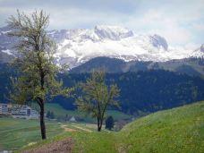 巍高地区自然公园-格勒诺布尔-陶乐诗