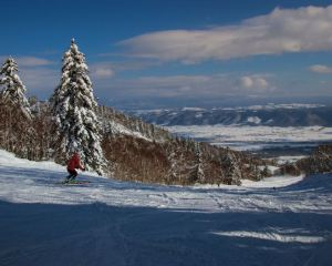【北海道滑雪】8間北海道滑雪場超詳細攻略