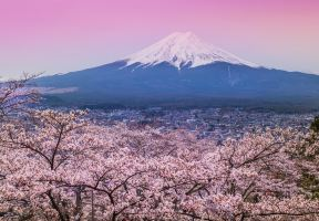 A Visit to Japan's World Heritage Sites (Part II)