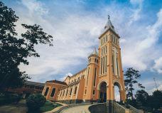 大叻天主教堂-大叻-zhulei831230