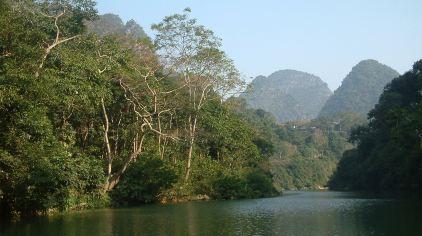 广西龙虎山自然保护区 (12)