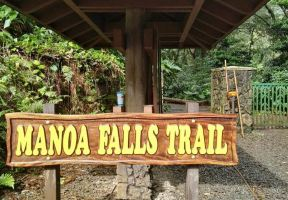 The Best Trail in Honolulu: Manoa Falls