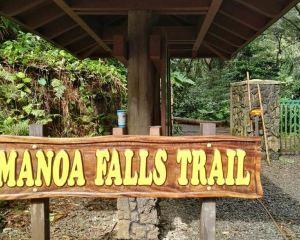 The Best Trail in Honolulu: Manoa Falls