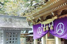 Yamauchi Shinto Shrine-高知市-234****816