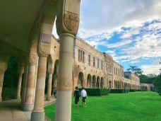昆士兰大学-布里斯班-M49****629
