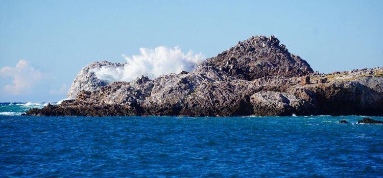 Top 8 Puerto Vallarta Beaches for your next trip