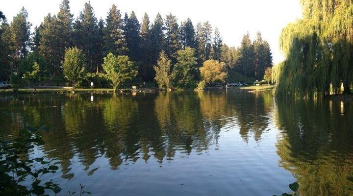 Explore The Most Lconic Spokane Manito Park