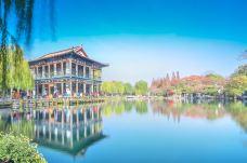 五龙潭公园-济南-尊敬的会员