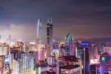 深圳-doris圈圈