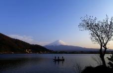 西湖-富士河口湖町-q****ky